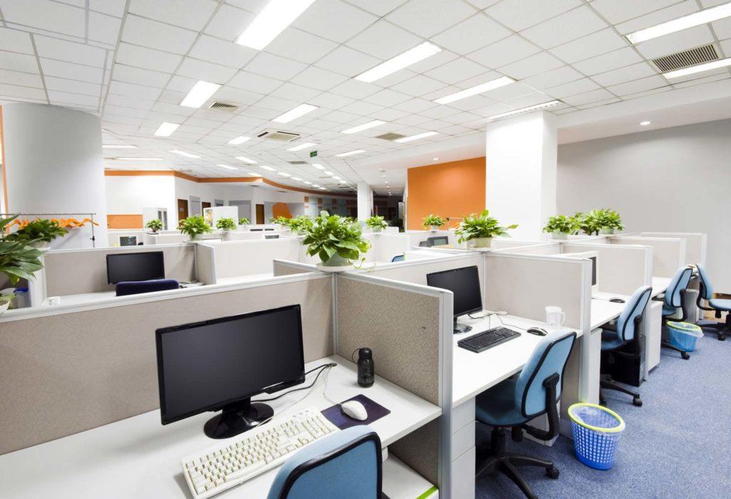 decoration-florale-entreprises-cornebarrieu